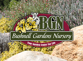 Bushnell Gardens Nursery Expert Tips: Water Reduction Concepts & Efforts That Work